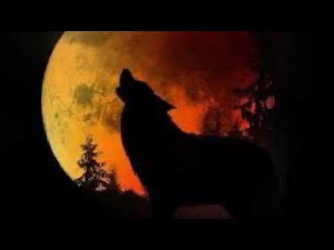 "A ""Full Wolf Moon Eclipse"" Is Happening on January 10  Here's ..."