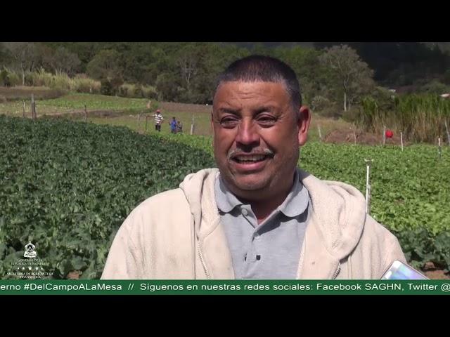 Productores de Lepaterique, satisfechos con atención del gobierno