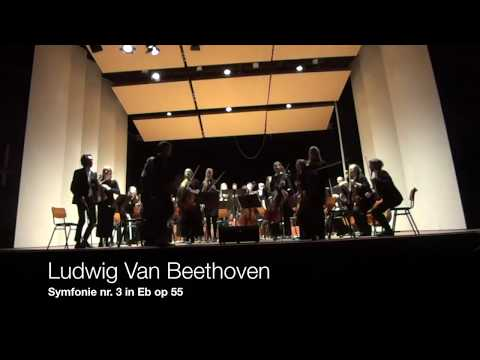 Beethoven Symphony 3 - Strauss Oboe concerto