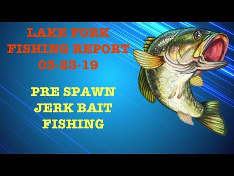 LAKE FORK FISHING Report 03-23-19