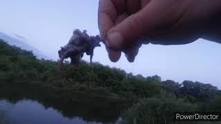 Рыбалка на сома Аист отжал у нас завтрак Ловля сома на реке часть 2