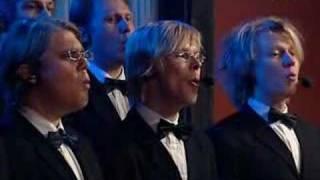 Seminaarinmäen Mieslaulajat - Taina (live)