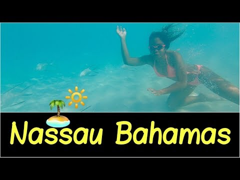 🌅Nassau, Bahamas | Taxi & Ferry Boat, Atlantis Resort, Viola's Restaurant, Cabbage Beach Overview