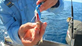 Big Grinner on an Octo Jig!! Funny Fishing video!!