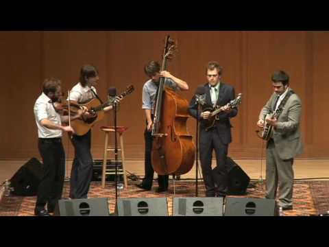 Punch Brothers: The Bee Keeper