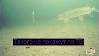 Уникальные кадры загадочного подводного мира Великое достояние Республики Саха Якутия