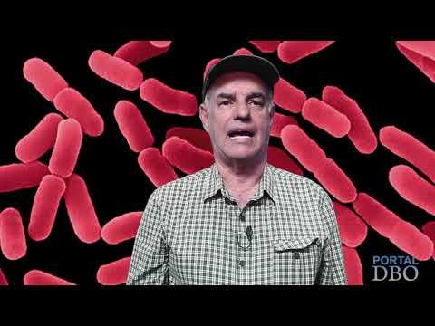 Agro DBO: Guerra de bactérias e compatibilidade de agroquímicos