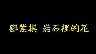 鄧紫棋 岩石裡的花 歌詞 【去人聲 KTV 純音樂 伴奏版】