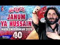 Nadeem Sarwar Janum Ya Hussain 1441 / 2019  - 40th Album