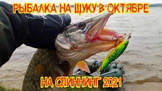 Рыбалка на щуку в ОКТЯБРЕ 2021 на спиннинг. Ловля щуки на воблеры