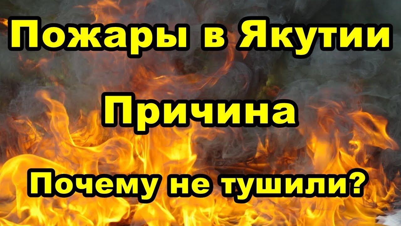 Пожары в Якутии. Причина.