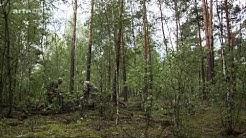 [Doku] Tschernobyl - Die Natur kehrt zurück [HD]
