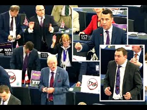UKIP MEPs speak for TTIP debate to proceed following vote suspension