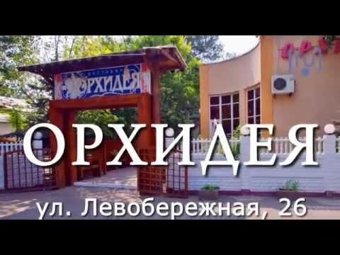 ОТКРЫТИЕ ДИЗАЙН ЦЕНТРА WEST в Ростове-на-Дону 2014г. - YouTube