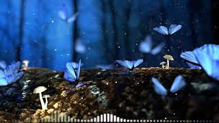 Lullaby Mozart Bedtime Music 🎵 Mozart for Babies Brain Development 🎵063