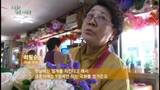 미니다큐 오늘 38회 노부부의 행복 예식장