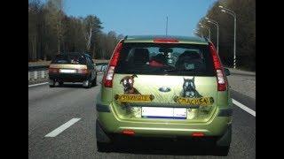 Смешные надписи на машинах. Автоприколы. Прикольные картинки!
