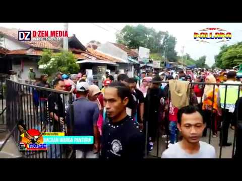 Cek Sound New Palapa Widuri Pemalang Jawa Tengah
