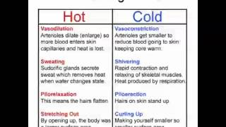 Ep16 - Thermoregulation and Osmoregulation (Unit 2)