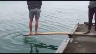 Pescuitul pe scandura :))