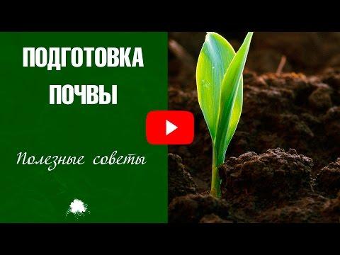 Подготовка почвы весной ☑️ Нужно ли перекапывать участок?