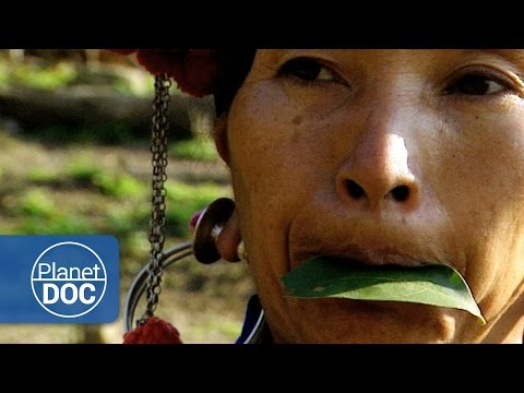 A Tribe from Laos | Culture - Planet Doc Full Documentaries