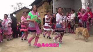Yang Xin Yue 杨新悦 -  Peb Hmoob Yuav Ua Lub Zoo Neej 我们苗族要过上好日子 Lyrics