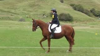 Battle Hill ODE 7/4/2013 - Dressage