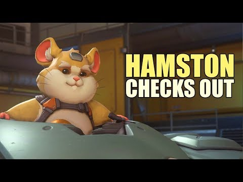 Hamston Checks Out