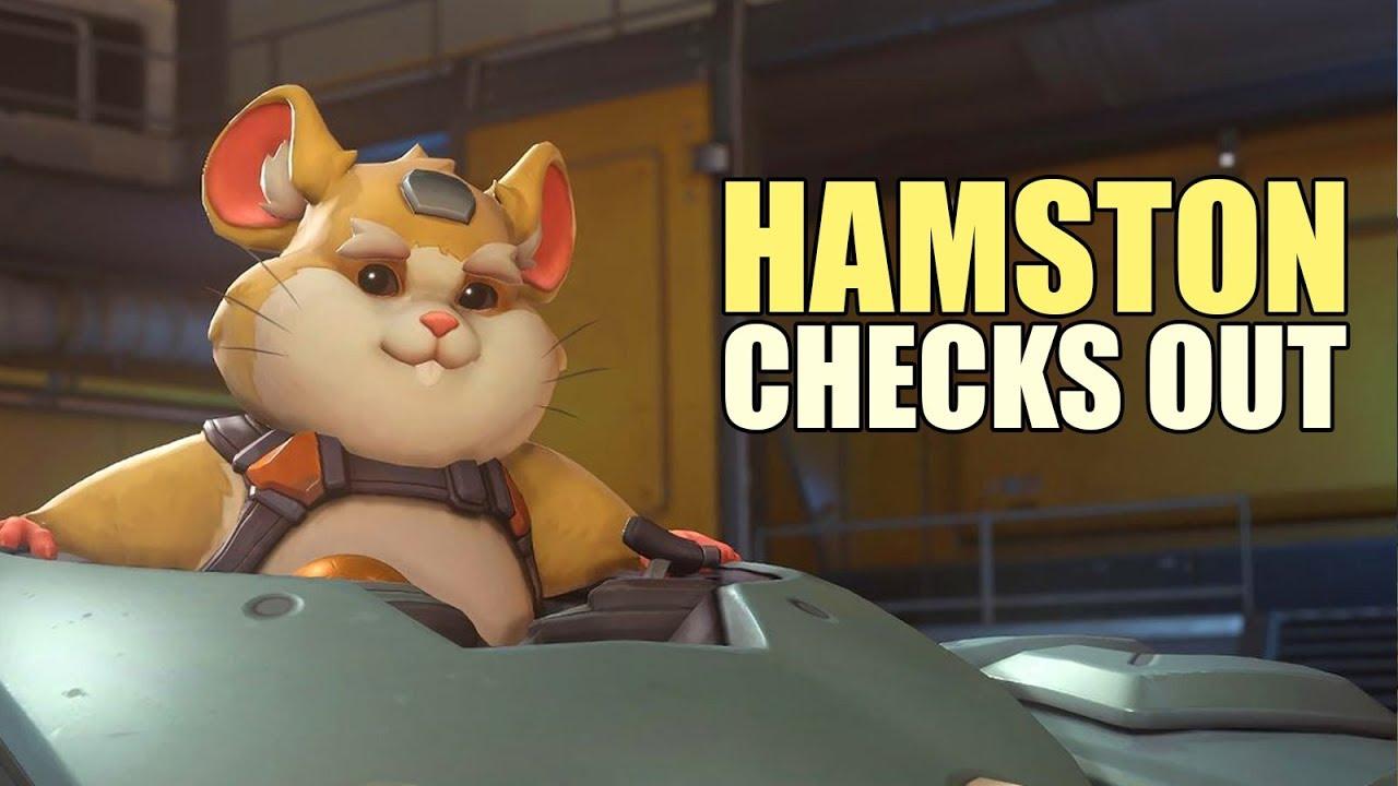 hamston-checks-out