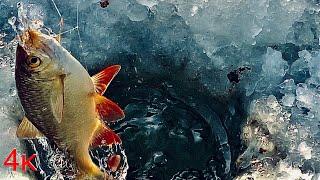 Поплавок на весь экран Зимняя рыбалка на удочку