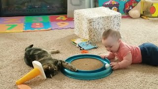baby and Cat fun and Fails cute funny baby video try not to Laugh Funny videos hks #1