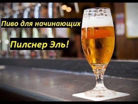 """Пиво для начинающих - """"Пилснер Эль""""!"""