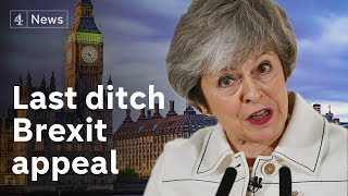 Last ditch appeals before crucial Brexit deal vote