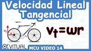 Velocidad lineal (tangencial) ejemplo 3 de 5 | Física - Vitual