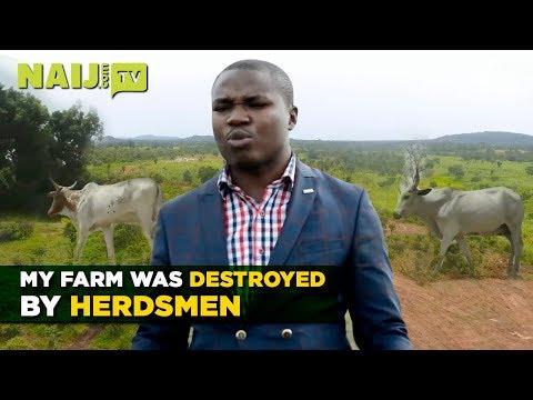 Nigeria Latest News: Herdsmen Have Destroyed my Farm - Nigerian Investor in Plateau | Legit TV