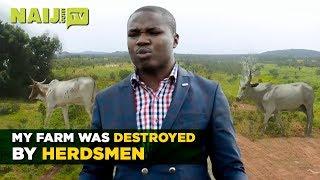 Nigeria Latest News: Herdsmen Have Destroyed my Farm - Nigerian Investor in Plateau   Naij.com TV