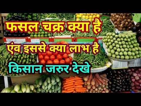 फसल चक्र क्या है और इसके क्या लाभ है What is the crop rotation and it's  benefits