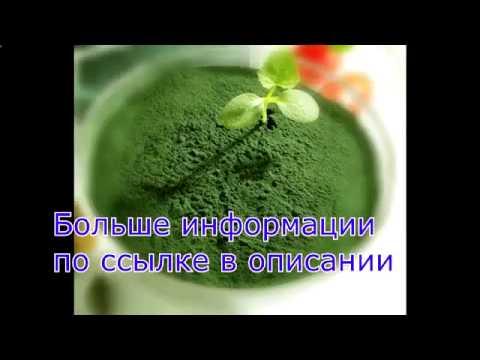 Официальный сайт Ecoapteka  натуральные товары для