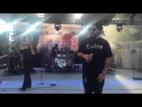 The Green Featuring J Boog | Rebelution: Falling Into Place Tour | June 2016