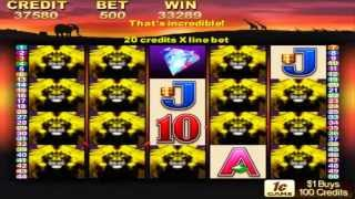 50 Lions Pokie Machine - Nearly got all of them - BIG Win - $828.00 In ONE SPIN!
