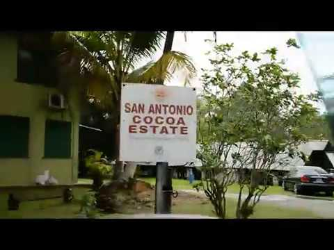 Montserrat Cocoa Farmers Cooperative Society Video Teaser