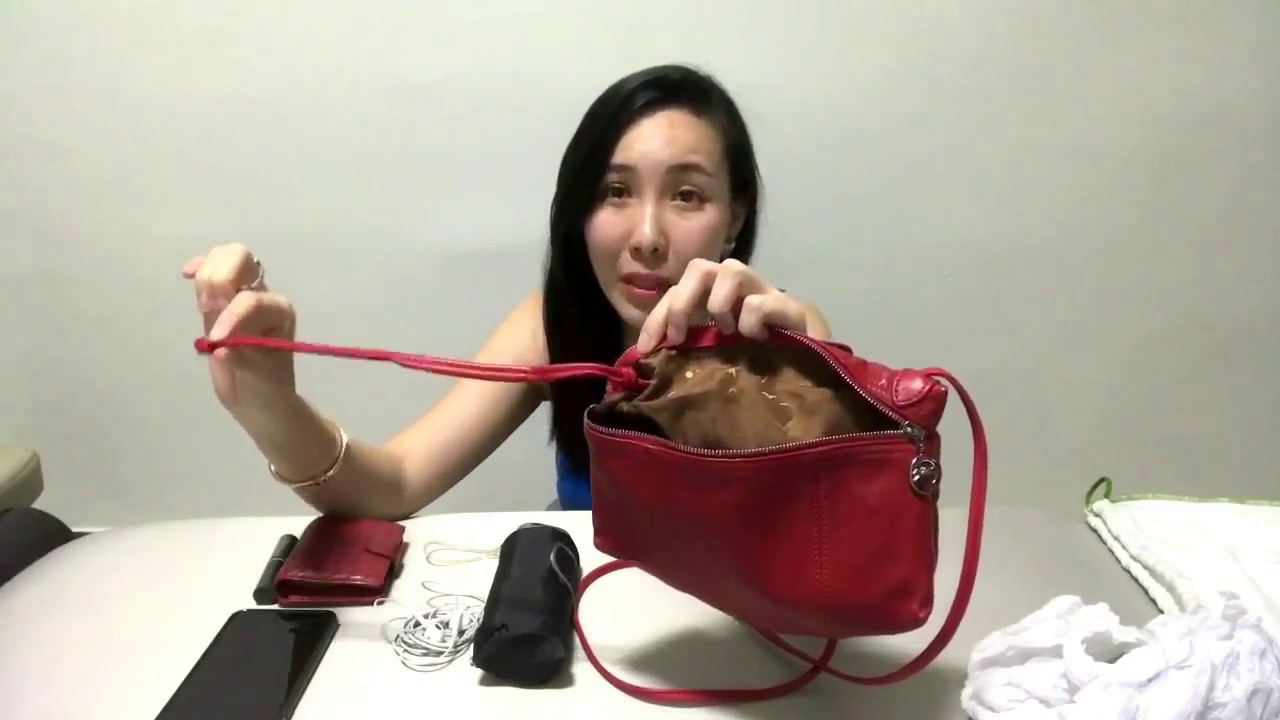 9dddd75d1a65 Longchamp Le Pliage Cuir Mini Crossbody Bag 珑骧小羊皮折叠包 - YouTube