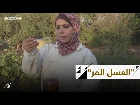 العسل المر.. فلسطينية تربي النحل وتخاطر بحياتها من أجل أسرتها  - نشر قبل 2 ساعة