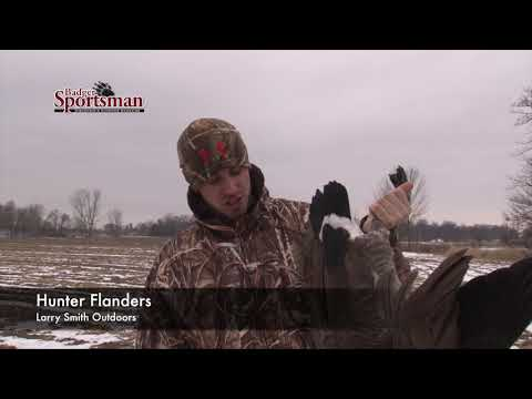 "Field Hunting Geese - ""LIVE"" Decoy Tip"