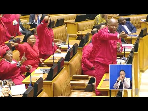 Comedy And Chaos In Parliament: EFF vs FF Plus And COPE