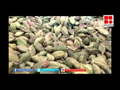 Idukki Cardomom farmers in pathetic condition