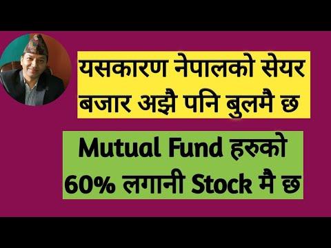 Download यसकारण नेपालको शेयर बजार अझै पनि  बुलमै छ | (Mutual Fund हरुको 60% लगानी Stock मै छ)