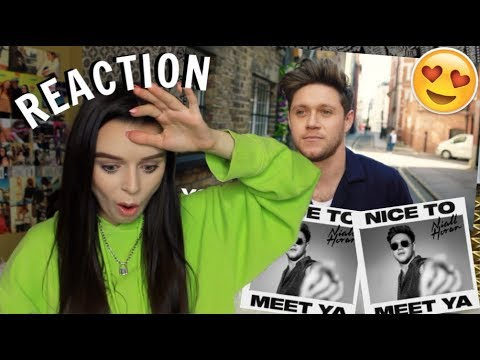 NIALL HORAN NICE TO MEET YA REACTION