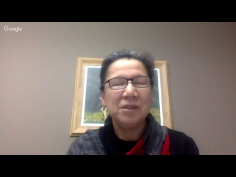 IDLE NO MORE WEBINAR ON FIRST NATIONS EDUCATION REFORM PROCESS